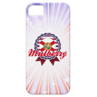 Mulberry, FL iPhone 5 Covers