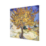 Mulberry Tree, 1889 Gallery Wrap Canvas