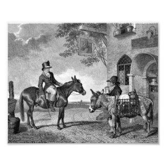Mule and Donkey Black and White Photo Art