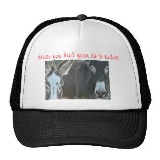 mule cap-customize cap