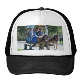 mule day parade cap
