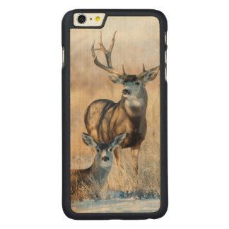 Mule Deer Buck and Doe Carved Maple iPhone 6 Plus Case