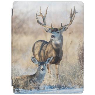 Mule Deer Buck and Doe iPad Cover