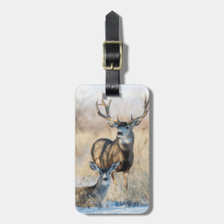 Mule Deer Buck and Doe Luggage Tag