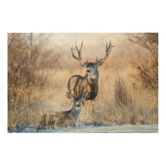 Mule Deer Buck and Doe Wood Wall Decor