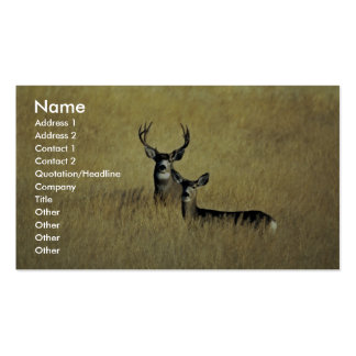 Mule Deer Double-Sided Standard Business Cards (Pack Of 100)
