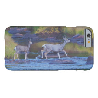Mule Deer Doe and Fawn Barely There iPhone 6 Case