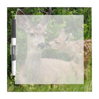 Mule Deer Doe with Fawn 2 Dry Erase Board