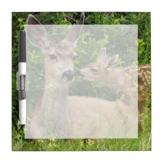 Mule Deer Doe with Fawn 2 Dry-Erase Whiteboards