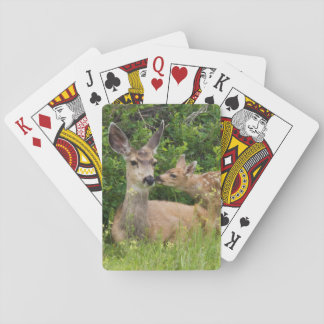 Mule Deer Doe with Fawn 2 Playing Cards