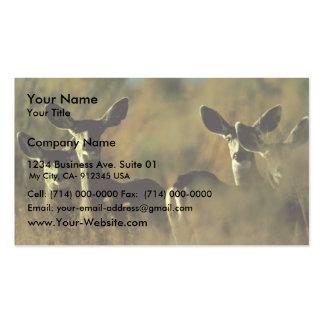 Mule Deer Herd Pack Of Standard Business Cards