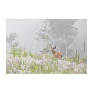 Mule Deer in Foggy Meadow Acrylic Wall Art