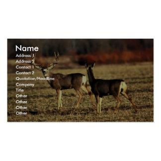 Mule Deer Pack Of Standard Business Cards