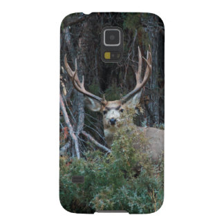 Mule deer spur buck galaxy s5 cases