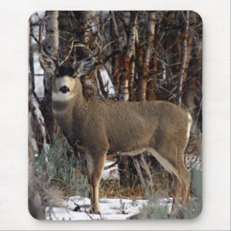 Mule deer ,wellsville mouse mat