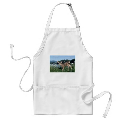 Mule Deer-young fawn in green field of white daisi Apron
