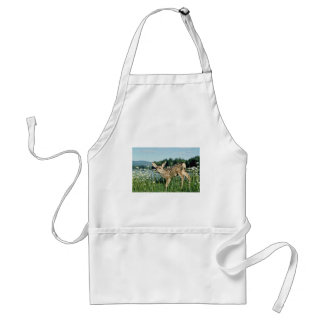 Mule Deer-young fawn in green field of white daisi Standard Apron