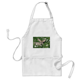 Mule Deer-young fawn lying in green field of white Apron