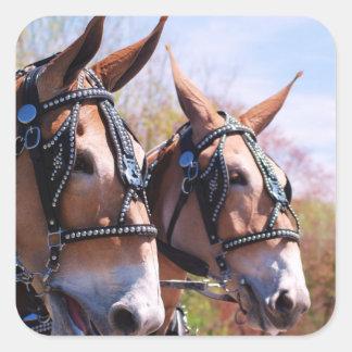 mules square sticker