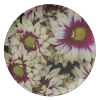 Multi color daisies party plate