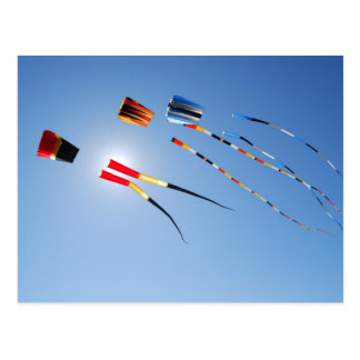 Multi Color Long Tail Kites Post Cards