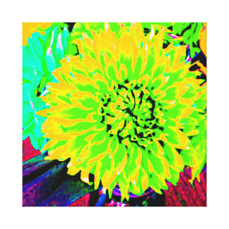 Multi colored dahlias bright yellow, orange, pink canvas prints