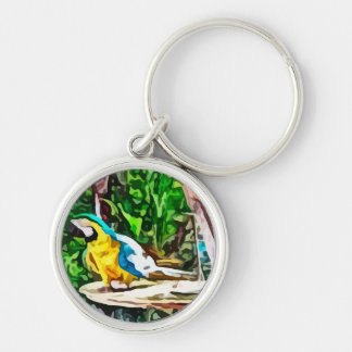 multi colored parrot painting Silver-Colored round key ring
