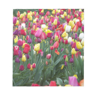 Multi-Colored Tulips in Field Notepad