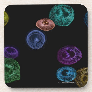 Multi coloured jelly fish on black background coaster