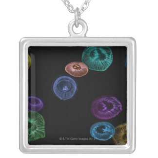 Multi coloured jelly fish on black background silver plated necklace