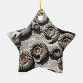Multi fossil ammonites from the Lower Lias Christmas Ornament