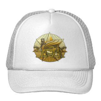 Multi-National Force – Iraq Trucker Hat