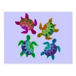 Multi Painted Turtles Postcard