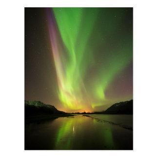 Multicolor Aurora Postcard