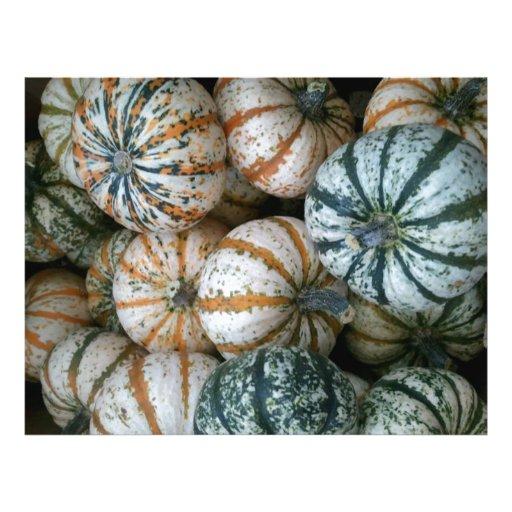 Multicolor Autumn Harvest Pumpkins Flyer Design