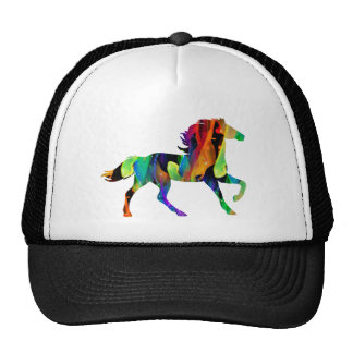 MULTICOLOR CABALLO PRODUCTS HAT