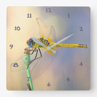 Multicolored Dragonfly Square Wall Clock