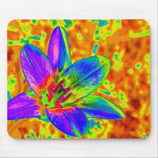 Multicolored flower mousepads