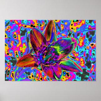 Multicolored flower print