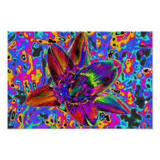 Multicolored flower posters