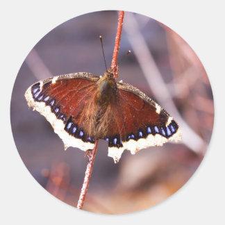 Multicolored Moth Round Sticker