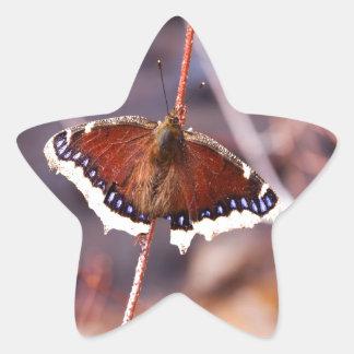 Multicolored Moth Star Sticker
