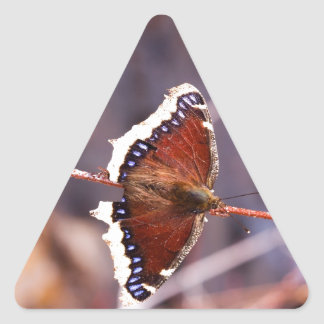 Multicolored Moth Triangle Sticker