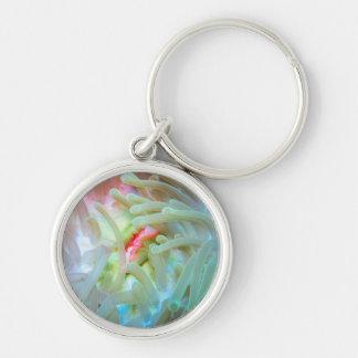 Multicolored Sea Anemone Silver-Colored Round Key Ring