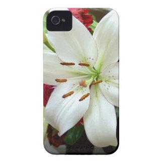 Multicoloured Flower Design iPhone 4 Cases