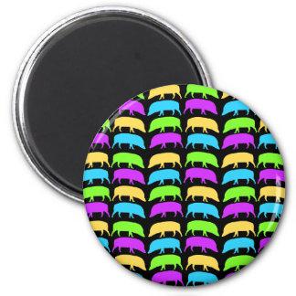 Multicoloured Hogs Magnet