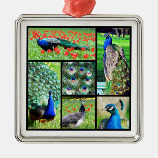 Multiple photos Indian peafowls Christmas Ornament