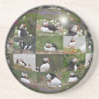 Multiple Puffin Images Beverage Coaster