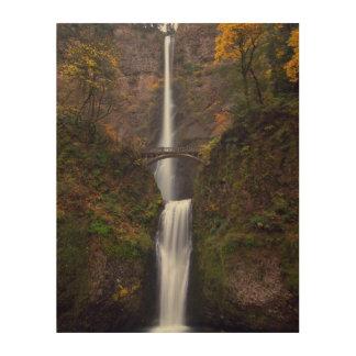 Multnomah Falls in late Autumn Wood Wall Art