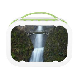 Multnomah Falls Lunchboxes